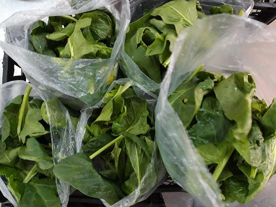 Spinach to be delivered to those in need in Serbia during COVID-19.